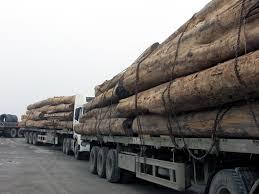Image result for chở qua tải
