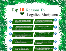 essay on legalization of weedessay on why weed should be legalized   pay us to write your essay