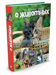 Моя <b>большая книга</b> о животных <b>Издательство Махаон</b> 2382536 в ...