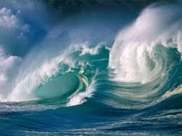 Resultado de imagen para día mundial de los océanos 2016