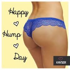 Image result for happy hump day