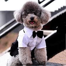 US <b>Fashion Small Dog Pet</b> Tuxedo Bow Tie Suit Coat Clothes ...