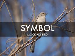 radley bird boo radley by maxwell anderson symbol mocking bird