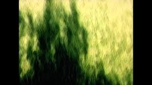 <b>Joni Mitchell</b> - The <b>Hissing Of</b> Summer Lawns - YouTube