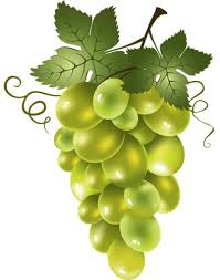 vinograd 25 | Виноградные лозы, Живопись фруктов и Декупаж