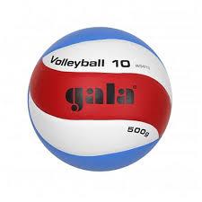 <b>Мяч волейбольный Gala Training</b> Heavy 10 купить в Москве ...
