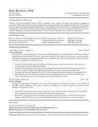 automotive finance director resume car s executive cv
