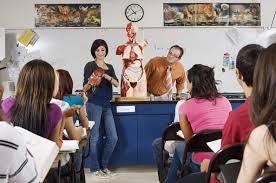 dissertation examples pdf ASB Th  ringen Biology as coursework edexcel ideas