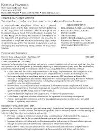 sample resume professional accomplishments   cv writing servicessample resume professional accomplishments resume sample  software engineering professional chief compliance officer resume sample cco