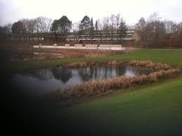 Billedresultat for bænken Ringe sø