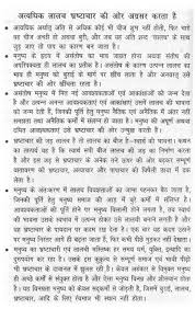 essay on too much greed lead to corruption in hindi
