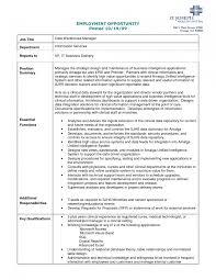 Entry Level Business Intelligence Analyst Resume   Clasifiedad  Com Velvetjobs     Market Research Analyst Resume Sample Volumetrics Co Business Analyst  Resume Examples      Business Analyst Resume Sample