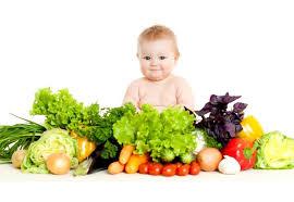 Image result for makanan untuk bayi 6 bulan pertama