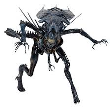 NECA - Aliens - Xenomorph Queen Ultra Deluxe ... - Amazon.com