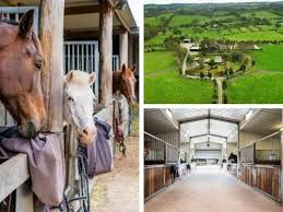 Saddle up, this might be SA's <b>best equestrian</b> property - realestate ...