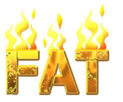 Image result for lemak tepu