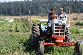 organic farm school the irresistible fleet of bicycles interested in becoming an organic farmer join our organic farm school program