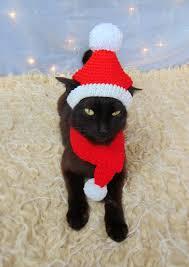 <b>Santa pet</b> costume <b>Christmas</b> cat outfit <b>Santa hat</b> and scarf | Etsy ...