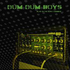 <b>Alive in</b> the Echo Chamber by Dum <b>Dum boys</b> on Spotify