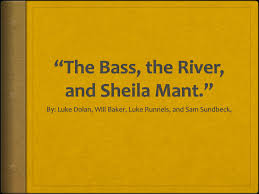the bass the river and sheila mant essay our work the bass the river and sheila mant publish glogster