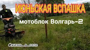 Июньская вспашка/<b>Мотоблок</b> Волгарь-2/<b>RedVerg</b> - YouTube