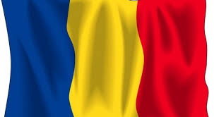 Image result for steagul tricolor