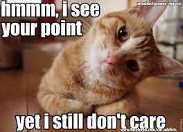 GEORGE & BRAD TAKEI Present: Team Takei — Indifferent cat is ... via Relatably.com