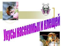 Картинки по запросу скачать картинку  укусы насекомых