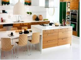 ikea kitchen contractor decorating ideas contemporary