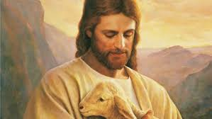 Risultati immagini per il buon pastore