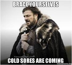 Brace Yourselves Cold sores are coming - Brace Yourself - Game of ... via Relatably.com