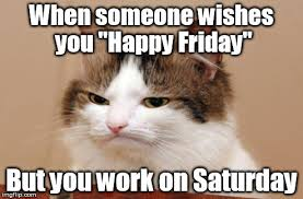 Image tagged in friday,work,disappointed,cat - Imgflip via Relatably.com