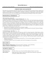 remarkable analyst resume examples brefash credit analyst resume sample volumetrics co mainframe programmer analyst resume sample system analyst resume objective examples