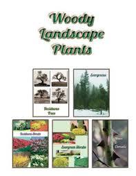 Woody Landscape Plants Issuu