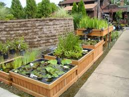 diy patio pond: balcony vegetable garden ideas water garden pond plants balcony vegetable garden ideas