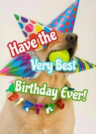 Puppy Birthdays on Pinterest | Dog Birthday, Happy Birthday and ... via Relatably.com