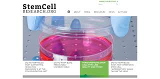 human cloning stem cell research