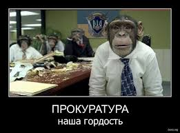 Луценко представил нового прокурора Полтавской области Кармазина - Цензор.НЕТ 4629