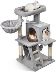 cat tree - Amazon.com