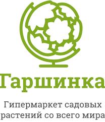 Купить <b>семена Огурцы</b> партенокарпические – доставка почтой ...