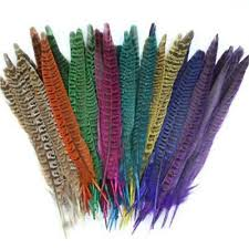 9 <b>colors 10pcs</b>/pack <b>Natural</b> Pheasant Feather Fly Tying Materials ...