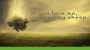 Image result for if you love me feed my sheep