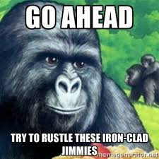 Go ahead try to rustle these iron-clad jimmies - Jimmies Rustled ... via Relatably.com