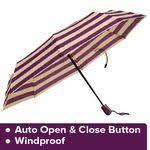 Buy DP <b>Three Fold Umbrella</b> - Auto Open & Close, Waterproof ...