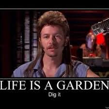 Quotes From Movie Joe Dirt. QuotesGram via Relatably.com