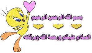 الخضار باللحمه images?q=tbn:ANd9GcQ