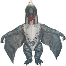 <b>Christmas</b> Unisex Fancy <b>Dress Inflatable Costumes</b> for sale   eBay