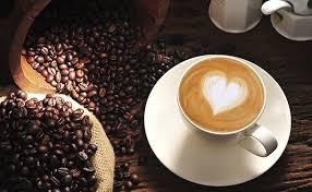 Resultado de imagem para bom dia café