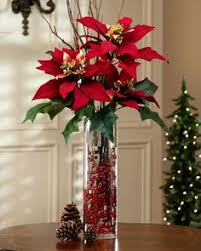 43 Best POINSETTIA DAY images | Poinsettia, Christmas ...