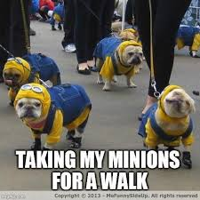 Minions! on Pinterest | Despicable Me 2, Minions Banana Song and ... via Relatably.com